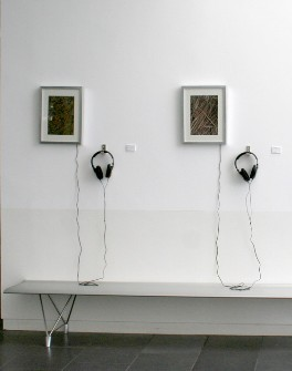 Photograph of Sound Installation by Suzanna Caprara